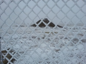 FrozenFence