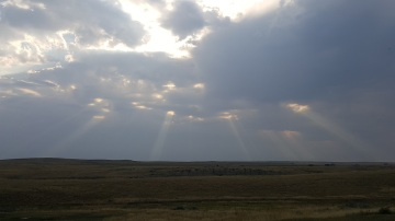 Sunbeams on the Prairie